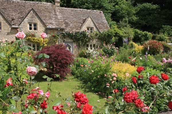 The garden of a cotswold cottage in the village of Bibury on a summers day with all its colour Bibury Gloucestershire England Great Britain UK