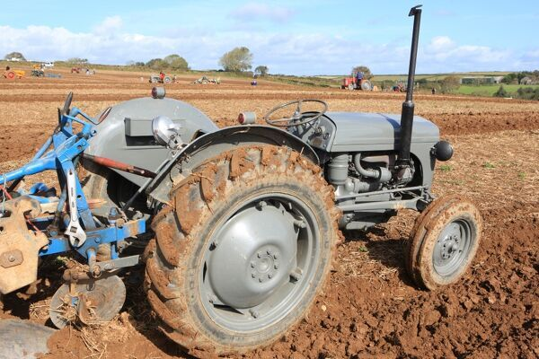 Vintage Massey Ferguson ( Little Grey Fergie ) tractor at a Ploughing Match at Pelynt near Looe in Cornwall on a autumn day