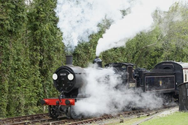 An old Express Steam Engine 30120 on the Bodmin & Wenford Railway at Bodmin Parkway station in Cornwall England, Its a LSWR Class T9 Greyhound 4-4-0, built in1899 and was used on the Plymouth Line