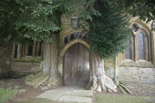 The North Door Way with its Yew trees at church in the cotswold town of Stow on the Wold Gloucestershire