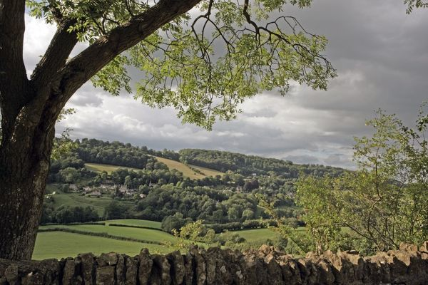 Slad. A valley near the cotswold village of Slad on a summers day