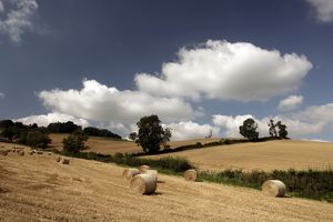 Late Summer in the Cotswolds